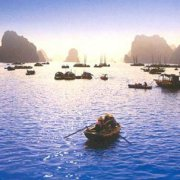 Thuý Hường Nguyễn