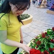 Giang Phan
